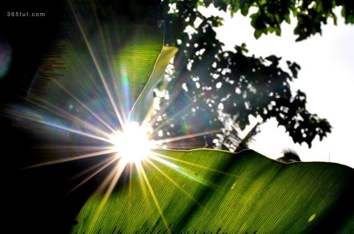 صورة [ دروس تصوير ] الدرس رقم ١١٤ – سبب تحويل الإضاءة إلى نجوم