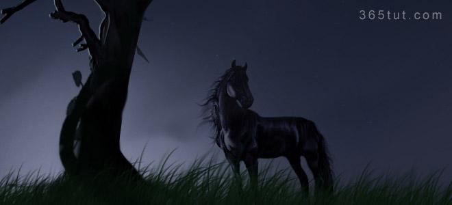 صورة [ دروس تصوير ] الدرس رقم ٦ – التصوير في الليل