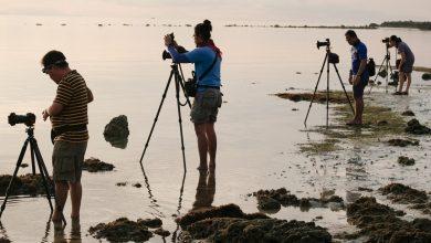 صورة هل ترغب باحتراف تصوير الطبيعة؟ تفضل ما تعلمته
